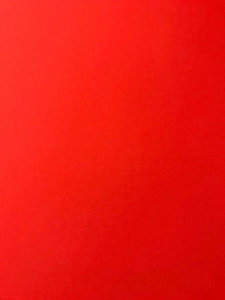 Markisenstoff Dralon 120cm rot